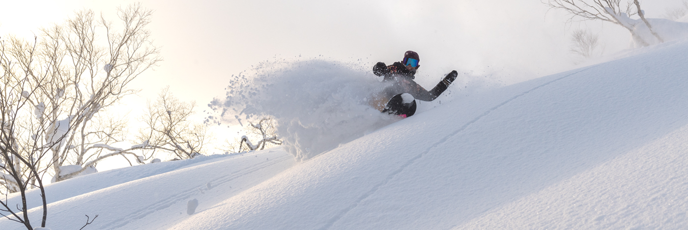 Roxy Snowboards Torah Bright