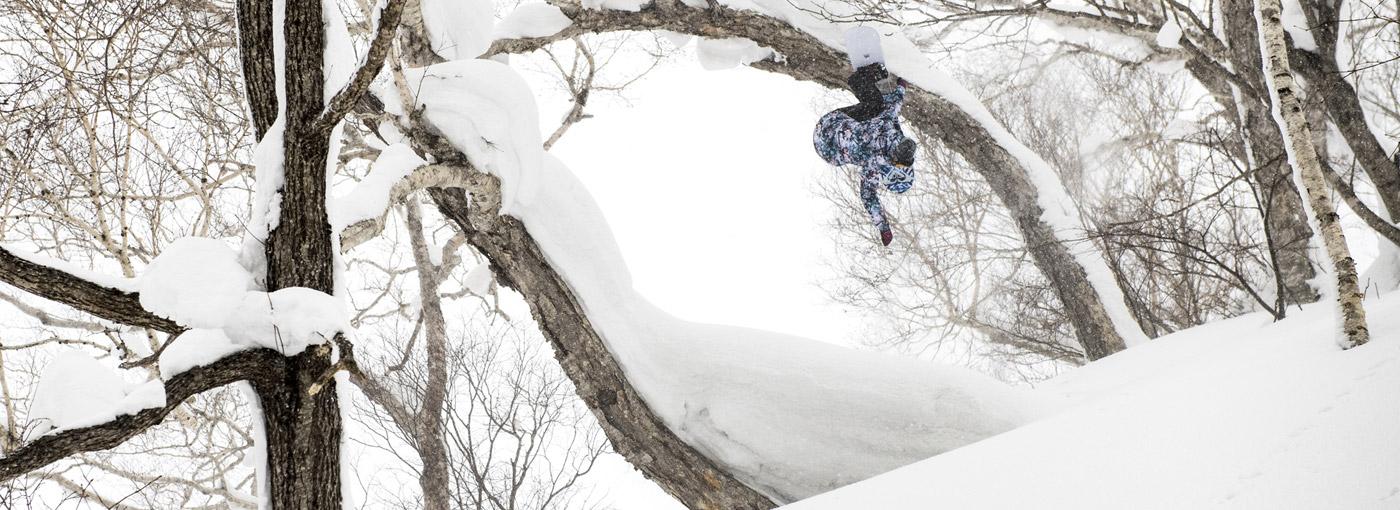 Roxy Snowboards Robin Van Gyn Trees