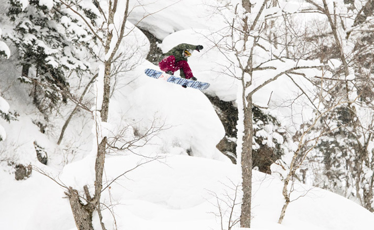 Roxy Snowboards Robin Van Gyn